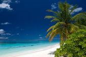 Summertime on a tropical beach — Stock Photo