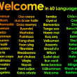 Welcome written in 60 different languages — Stock Photo #9903057