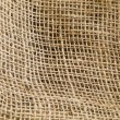 Natural Undulating Fibres Texture — Stock Photo