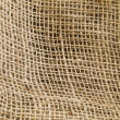 Natural Undulating Fibres Texture — Stock Photo #9903901