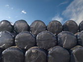 Stored Hay Bails in Black Plastic Wrap — Stock Photo