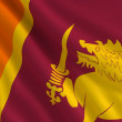 Stock Photo: Flag of Sri Lanka