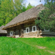 Ancient traditional ukrainian house with a straw roof, Pirogovo Folk Museum, Kiev - Stock Photo