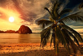 Hot Tripical Sunset — Stock Photo
