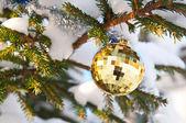 Beautiful christmas ball on Christmas tree — Stock Photo
