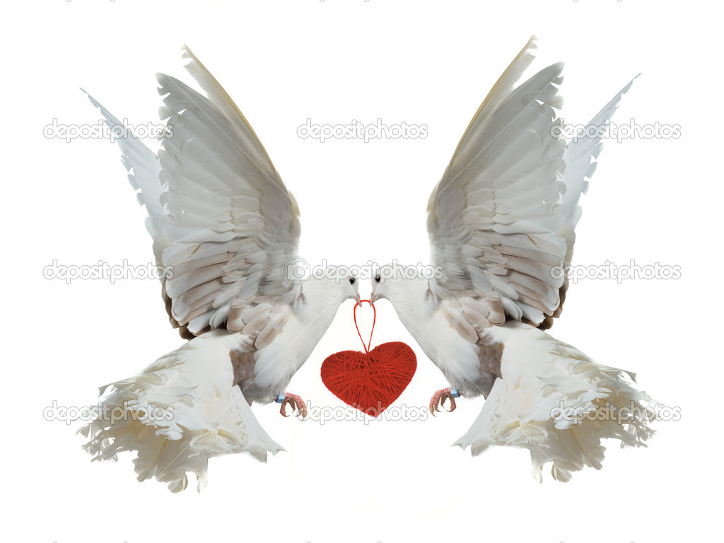 2 doves holding a scroll