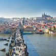 Charles bridge — Stock Photo #8334031
