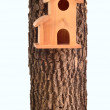 Modern starling-house on a tree trunk isolated — Stock Photo