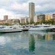 Harbour in Alicante — Stock Photo