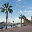 Alicante Marina — Stock Photo