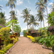 Tropical garden — Stock Photo #8334753