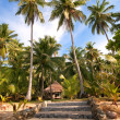 Stock Photo: Path to a tropical villa