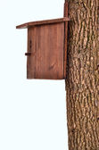 Wooden starling-house on a bole isolated on white — Stock Photo