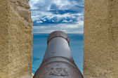 Old Cannon — Foto Stock