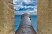 Velho canhão — Foto Stock