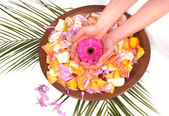 Woman Hands Spa with flower petals and natural ingredients - manicure conce — Stock Photo