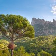 Mountains Montserrat, Spain — Stock Photo