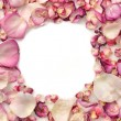 Frame made of pink rose petals — Stockfoto