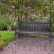 Beautiful garden with a bench surrounded by pink roses — Stock Photo