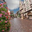Stock Photo: Paved street in Alsace