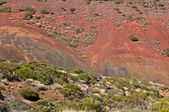 Red volcanic hills, Lanzarote island, Spain — Stock Photo
