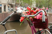 A basket of fresh bouquet of red tulips on a bike — Foto de Stock