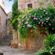 Stock Photo: Peratallada, Spain