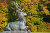 Statue of a deer — Stock Photo