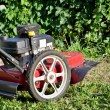 Lawnmower — Stock Photo #9087353