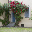 Stock Photo: Old town door with rose bushes, Germany