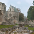 Abbey Ruins — Foto de Stock