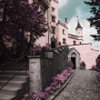 Famous Hohenschwangau Castle, Germany — Stock Photo #9767997