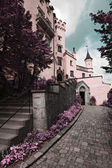 Famous Hohenschwangau Castle, Germany — Stock Photo