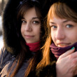 Two female friends walking in park in winter - Stok fotoğraf