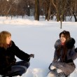 Two female friends walking in park in winter - ストック写真