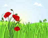 Cute landscape with poppies. — Vector de stock