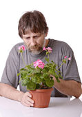 Man caring for a potted flower — Stock Photo
