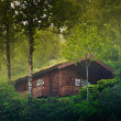 House in the Norway forest - Stock Photo