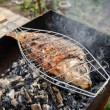 Grilled Fish - Cooking — Stock Photo