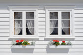 Windows with flowers — Foto Stock