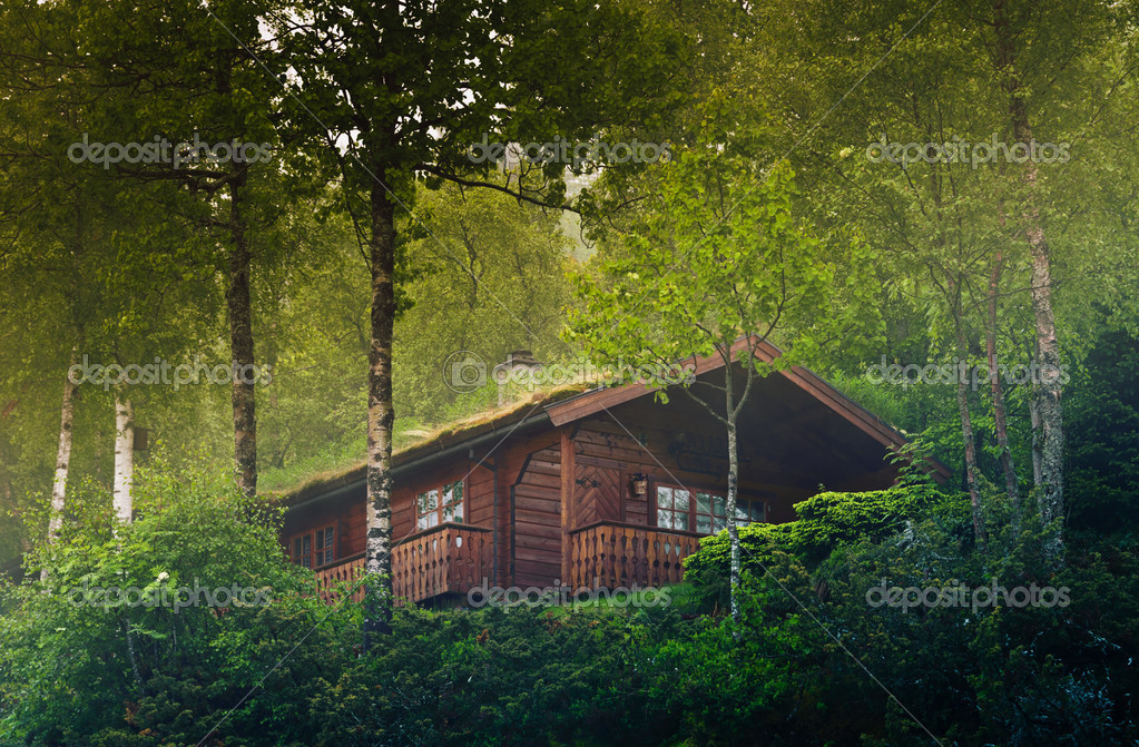 House in the Norway forest — Stock Photo #8574572
