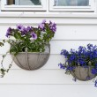 Stock Photo: Decoration of Norwegihomes. Stavanger old town