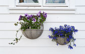 Decoration of Norwegian homes. Stavanger old town — Stock Photo