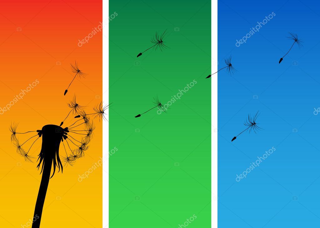 Blow Dandelion — Stock Vector #9410690