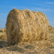 Haystack — Stock Photo