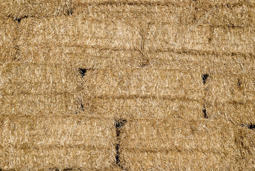 Hay texture  Stock Photo #9457122