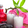 Spa zen accessories — Stock Photo #8038483
