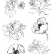 Royalty-Free Stock Vector Image: Hand drawing flowers set