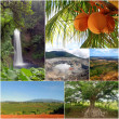 Costa Rica Natural Diversity Collage - Stock Photo