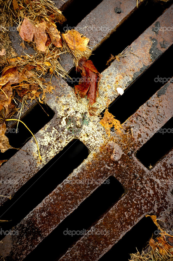 An abstract image of a rusty sewer grate with wet autumn leaves.  Stock Photo #8378325
